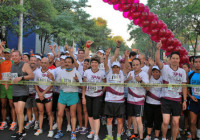 Carrera IPN 11K 2013