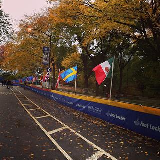 transmision en vivo maraton de nueva york