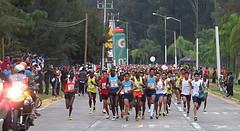 medio maraton atlas 2014