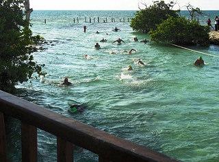 triatlon hacienda tres rios sprint riviera maya hotel playa del carmen