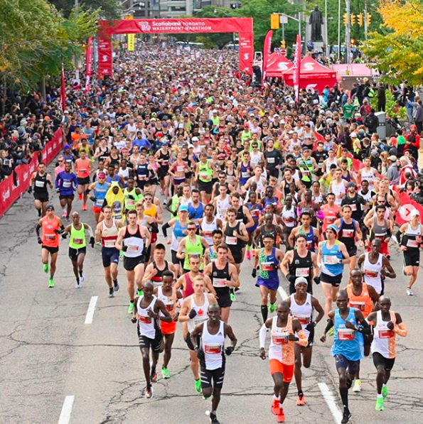 maraton toronto scotiabank 2019